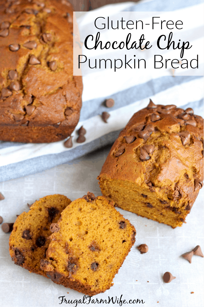 Looking for the perfect combo of chocolate and pumpkin? This gluten-free chocolate chip pumpkin bread is for you!