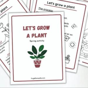 Spring Garden Printable for Kids
