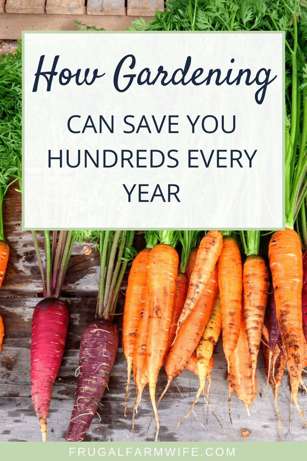 how to save hundreds of dollars with a garden