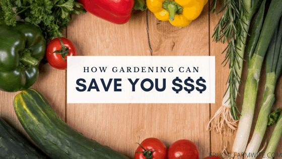 how growing vegetables saves you money